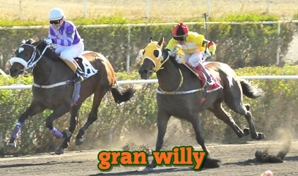 Gran Willy